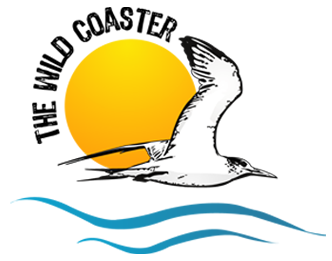 The Wild Coaster - Pietermaritzburg, Wildcoast History, Crafts, Books, Boats, Dvds